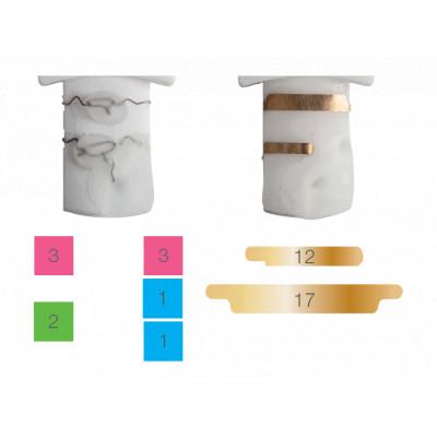 Modèle d'ongles d'entrainement pour onychoplastie - 5 pièces - Otto - Ruck