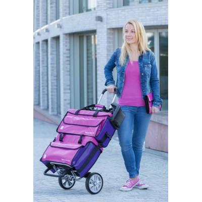 Ensemble Mallettes de transport pour Domicile Rose/Violet Ruck